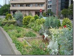 常緑樹が多かった5年前の花壇