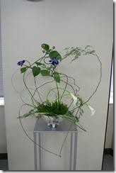 花の造形          5月16日-2