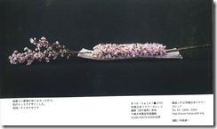 松田先生0402